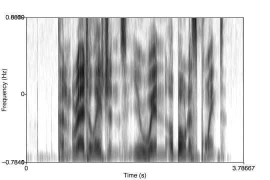 [spectrogram]